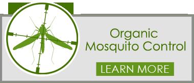 organic mosquito control