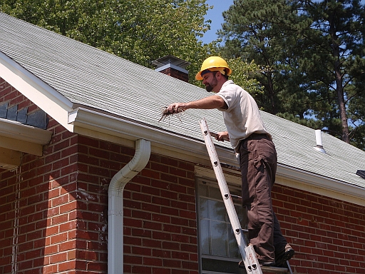 Gutter Cleaning: A Natural Mosquito Control Project